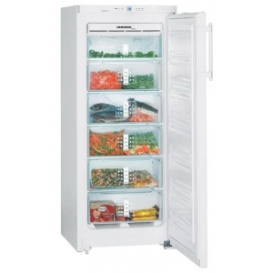 Купить Морозильный шкаф LIEBHERR GNP 2356-22001