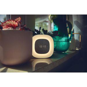 Купить Часы-будильник Vipe home GO цвет grey